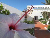 Lire la suite: Hotel Henry Village Gammarth